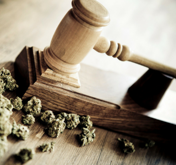 Florida Marijuana Laws & Regulations