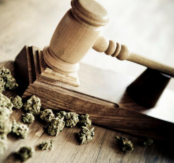 Florida Marijuana Laws & Regulations
